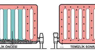 petek temizleme öncesi ve sonrası